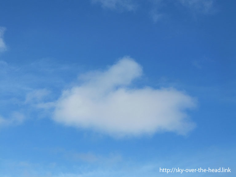 ウサギのような雲 (南太平洋03)/Clouds such as rabbit(South Pacific 03)