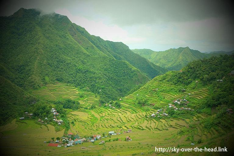 バタッド ライステラス(フィリピン)/BATAD RICE TERRCES(Philippines)