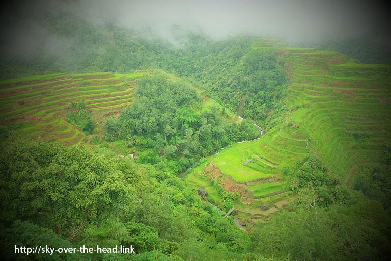 バナウェ ビューポイントの棚田(フィリピン)/Banaue view point of the rice terraces (Philippines)