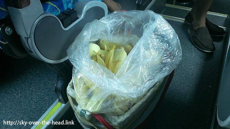 フィリピンでバスに乗る方法