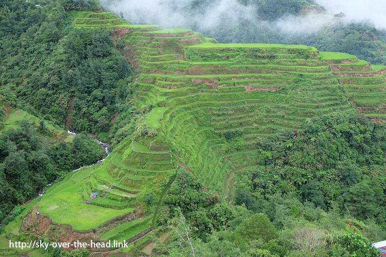 バナウェの棚田(ライステラスビューポイント)/Banaue view point(Philippines)