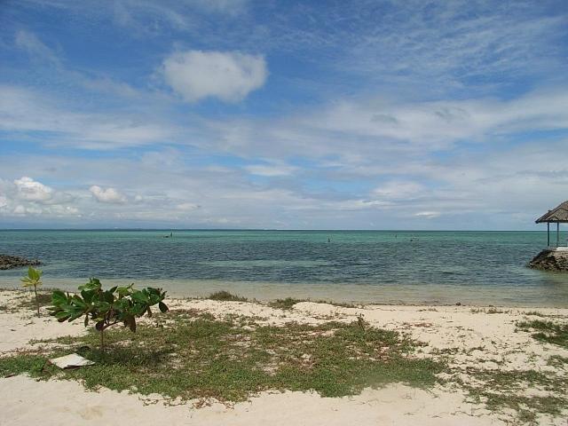 フィリピンのセブ島に【無料】【0円】で留学をする方法