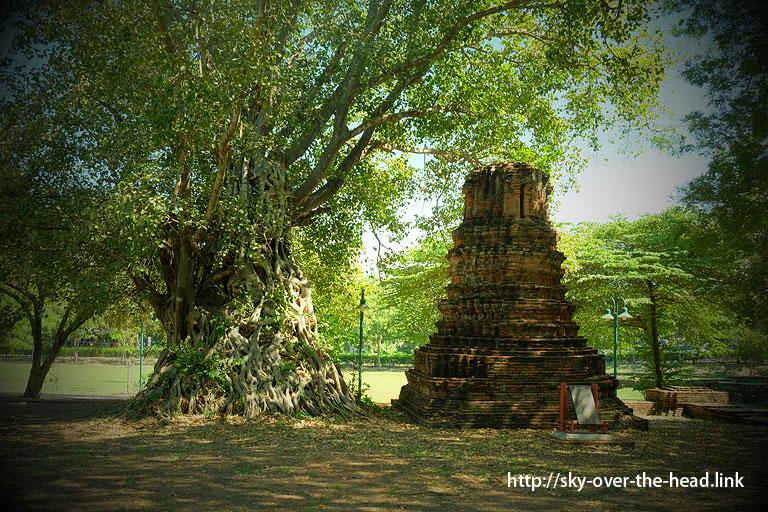 Wat Chao Prab(アユタヤ/タイ)/ Wat Chao Prab(Ayutthaya/Thailand)