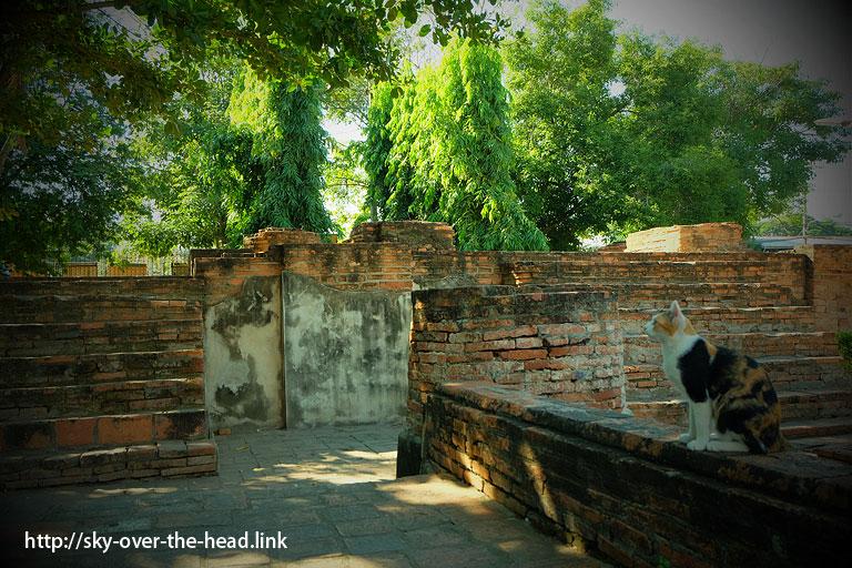 ワット・ヤイ・チャイ・モンコン(アユタヤ/タイ)/Wat Yai Chai Mongkon(Ayutthaya/Thailand)