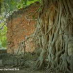 ワット・マハタート(アユタヤ/タイ)/Wat Phra Mahatha(Ayutthaya/Thailand)