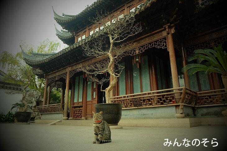 豫園@上海(中国)