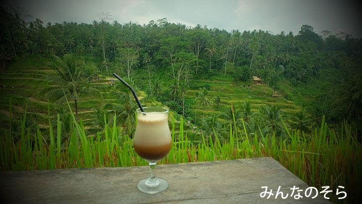 テガララン ライステラスにレンタルバイクで行き、散策+絶景カフェでバリコーヒー(バリ島)
