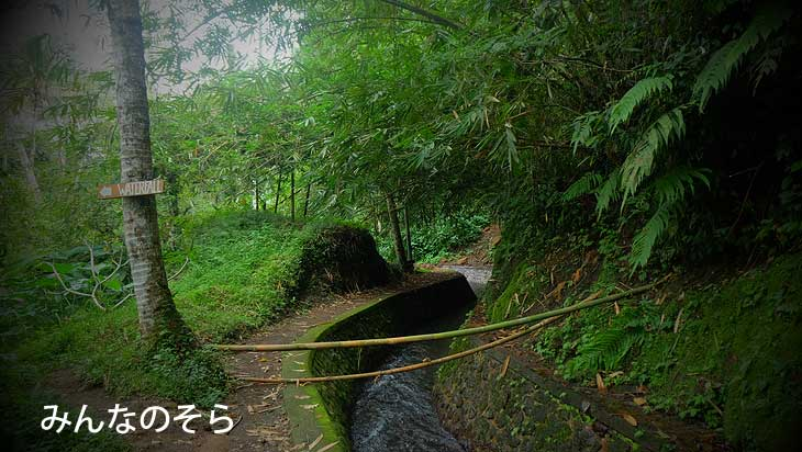 秘境!トゥカッド・チュプン(Tukad Cepung Waterfall)の滝