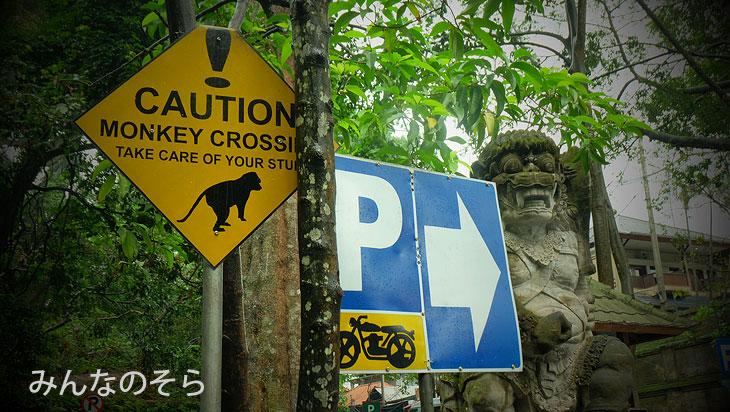 モンキーフォレス通り@バリ島ウブドの観光地!モンキーフォレストで「猿+α」を愛でる
