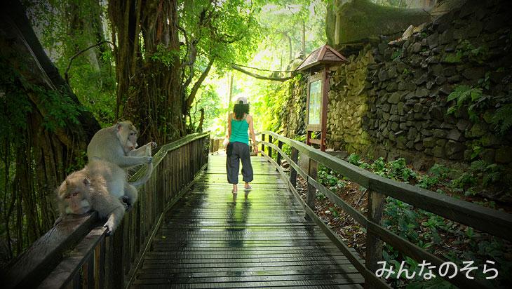 森に佇むお池や「ドラゴンブリッジ(仮)」に大興奮!@バリ島ウブドの観光地!モンキーフォレストで「猿+α」を愛でる