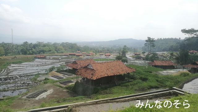 「Argo Dwipangga10」から眺める棚田にうっとり